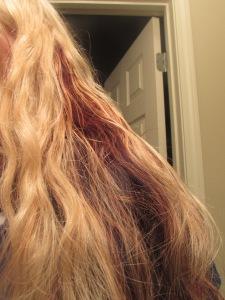 Poofy poodle hair (before hairbrushing)